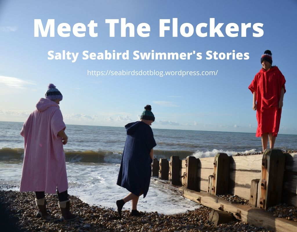 Meet The Flockers; A Salty SeabirdIntroduction
